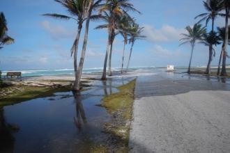 海平面上升 全球低洼岛屿十年内可能无法居住
