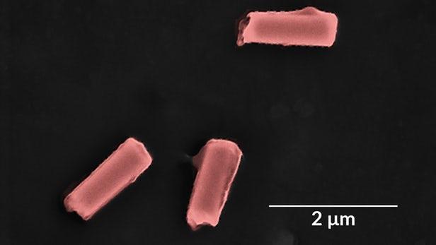 """科学家开发出一种用于解毒血液的隔膜包裹""""机器人"""""""