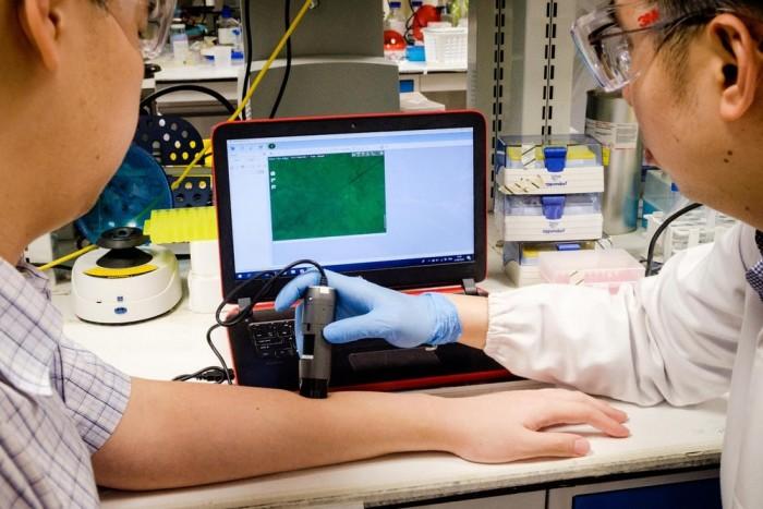 覆盖有特定序列DNA链的纳米粒子可以帮助减少疤痕