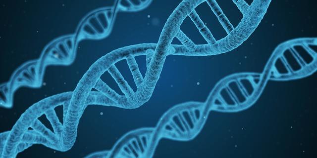 新CRISPR基因编辑技术可修复精子缺陷 完美婴儿越来越近
