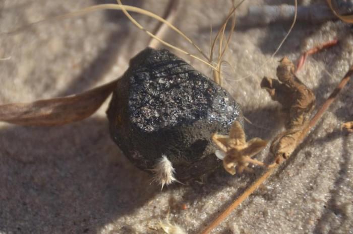科学家发现小行星2018 LA撞击地球后留下的陨石碎片
