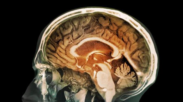 """人类大脑语音识别有""""瓶颈"""":无法同时记录两个人说话"""
