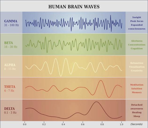 人类为什么会有意识?一切可能都与振动有关