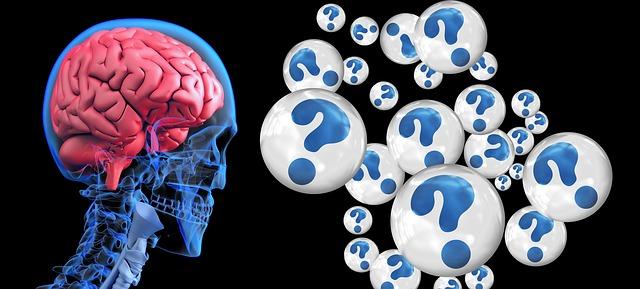 brain-2546101_640.jpg