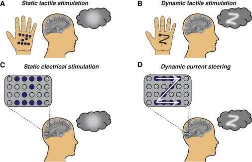 科学家研发盲人视物技术:能够每分钟识别86种形状
